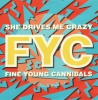 Fine Young Cannibals - She Drives Me Crazy (M-)