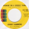 Johnny Hammond - Workin' On A Groovy Thing
