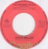 Steve Miller - Take The Money And Run