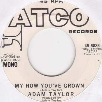 Adam Taylor - My How You've Grown