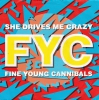 Fine Young Cannibals - She Drives Me Crazy
