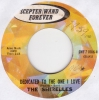Shirelles - Dedicated To The One I Love