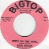 Toni Fisher - West Of The Wall