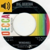 Windmill - Big Bertha